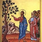 33 sunday in ordinary time